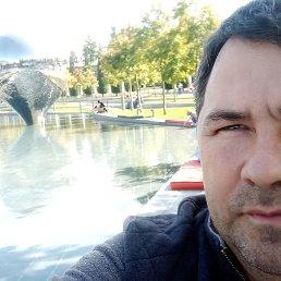 Александр, 38 лет, Воронеж