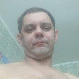 Александр, 41 год, Красноярск