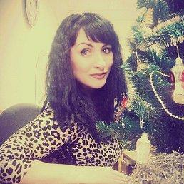 Алена, 33 года, Белгород