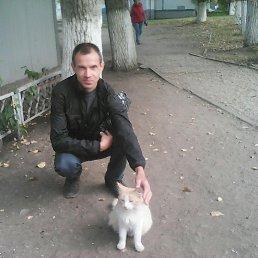 Николай, 44 года, Кемерово