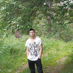 Николай, 23 года, Пласт