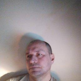 Сергей, 49 лет, Новоалександровск