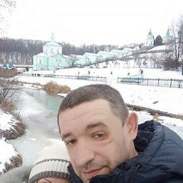 Алексей, 37 лет, Курск