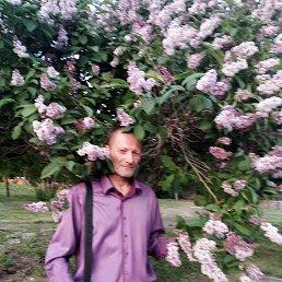 Фото Евгений, Новосибирск, 58 лет - добавлено 20 июня 2021