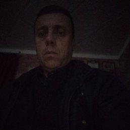 Владимир, 44 года, Ставрополь