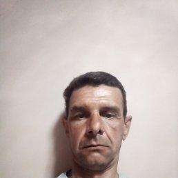 Дмитрий, 49 лет, Тюмень
