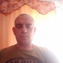 Илья, 41 год, Орехово-Зуево