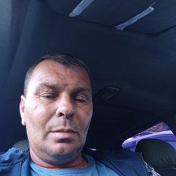 Владимир Шпанский, 46 лет, Ставрополь