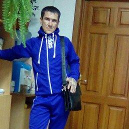 Дмитрий, 37 лет, Тюмень