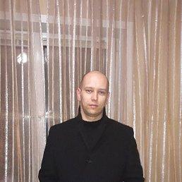 Антон, 32 года, Брянск