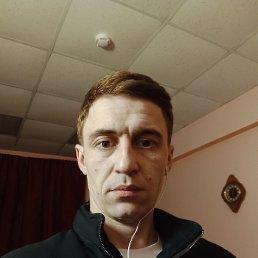 Александр, 32 года, Химки