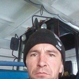 Александр, 44 года, Барнаул