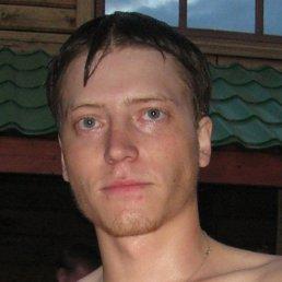 Николай, 35 лет, Белгород