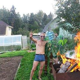 Николай, 34 года, Дмитров