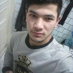 Артём, 29 лет, Химки