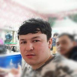 Алик, 26 лет, Краснодарский