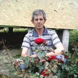 Александр, 50 лет, Сочи