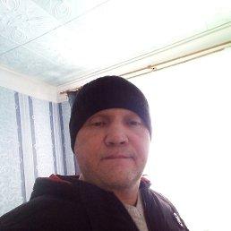 Александр, 44 года, Киров