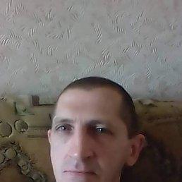 Сергей, 47 лет, Кировоград