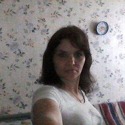 Галина, 41 год, Красный Холм