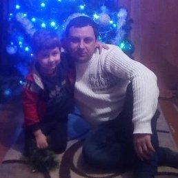 Ruslan, 38 лет, Бережаны