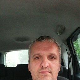 Алексей, 41 год, Тула