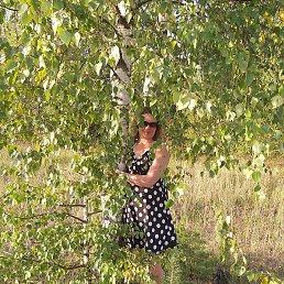 Елена, 42 года, Тверь