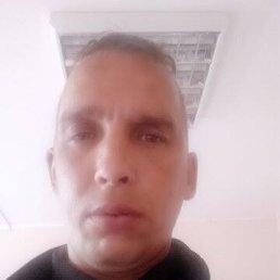 Евгений, 39 лет, Красноярск