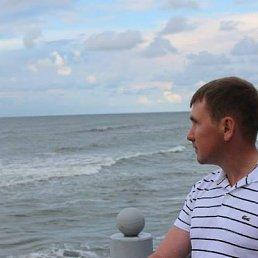 Артур, 37 лет, Черноголовка