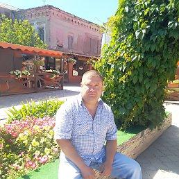 Андрей, 37 лет, Сарапул