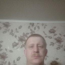 Дмитрий, 37 лет, Тверь