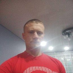 Денис, 37 лет, Курск
