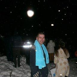 Михаил, 38 лет, Киров