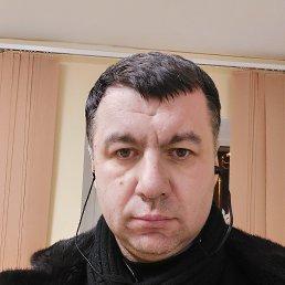 Александр, 41 год, Тула
