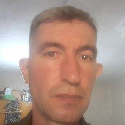 Андрей, Белгород, 47 лет
