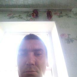 Николай, 32 года, Москва
