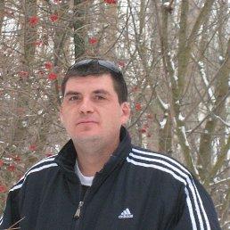 Роман, 41 год, Сочи