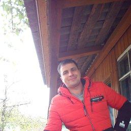 Евгений, 37 лет, Тула