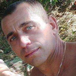 Олег, 35 лет, Бережаны