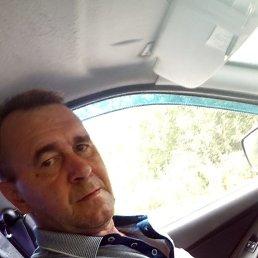 Владимир, 50 лет, Алтайское