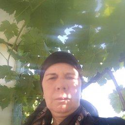 Маликат, 48 лет, Махачкала