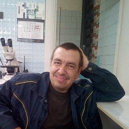 Александр, 41 год, Кемерово