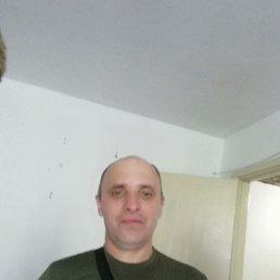 Евгений, 44 года, Кемерово
