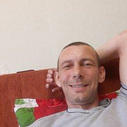 Василий, 46 лет, Новосибирск