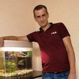 Сергей, 33 года, Тверь