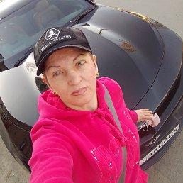 Анна, 43 года, Воронеж