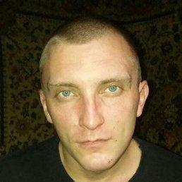 Василий, 33 года, Новосибирск