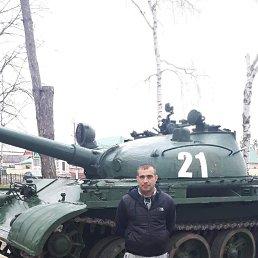 Виктор, 33 года, Сочи