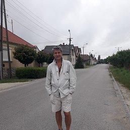 Серёжа, 48 лет, Васильков