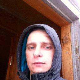 саша, 30 лет, Краснодар